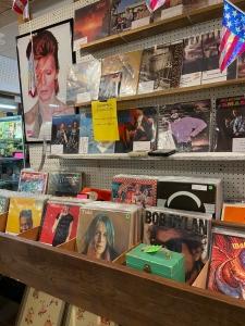 Vinyl Collectibles